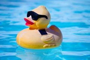 The best swimming pool playthings for the kids