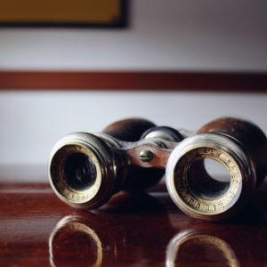 Bird Watching Binoculars And Everything That You Need To Know About Them